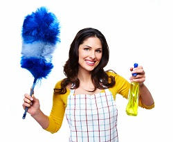 Professional House Cleaning UK