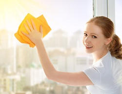 Professional Cleaning in West London